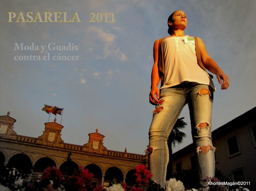 PROGRAMA OFICIAL FERIA GUADIX 2011  (2/3)