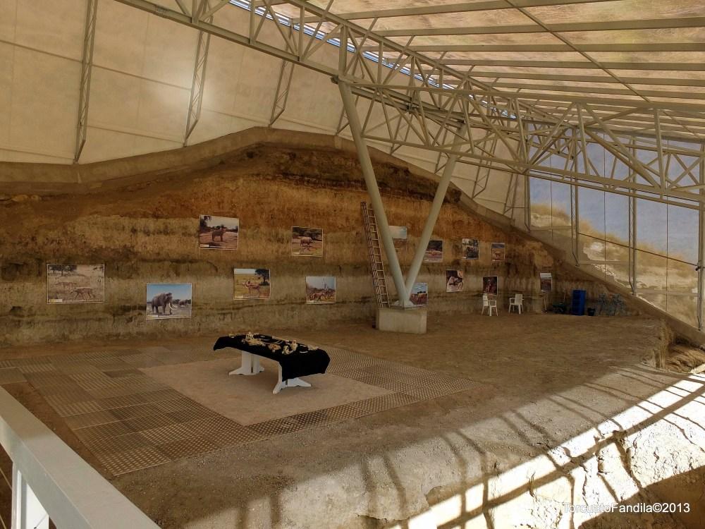Presentado el Centro Paleontológico. VALLE DEL RÍO FARDES, de Fonelas (2/2)