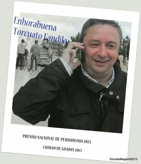 Torcuato Fandila Premio Nacional de Periodismo Ciudad de Guadix 2013